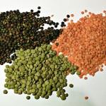 Добавете семена към диетата си на отслабване!