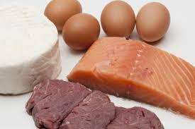 proteini-dieti