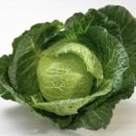 Къдравото зеле (кале)- новата мода в диетите