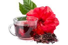 hibiskus-chai