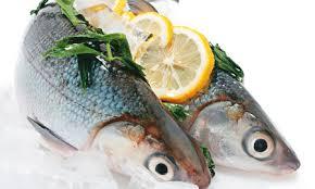 morska-hrana