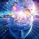 Мозъкът може да се програмира, за да топи мазнини