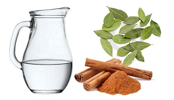 chai-kanela-dafinov-list