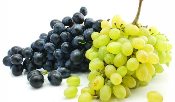 grozde-2
