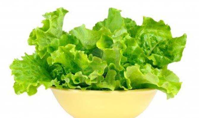 dieta-marulia-1