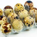 Яйцата от пъдпъдък помагат за Отслабването