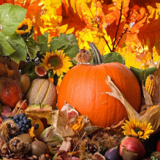 Ето кои са най- полезния Плодове и Зеленчуци за Отслабване през Есента: